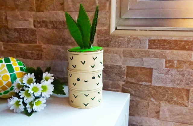 upcycled pineapple organiser tutorial with video